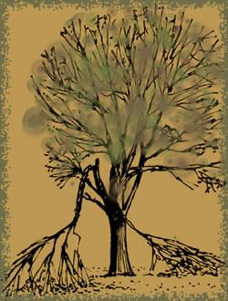 pokidana grana